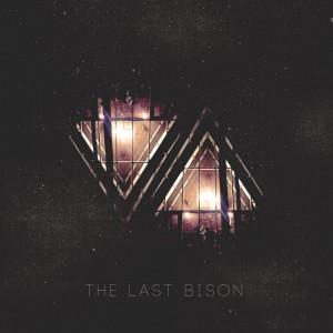 TLB VA Cover